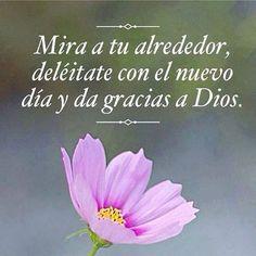 !! Buenos dias, y dar gracias a Dios!!