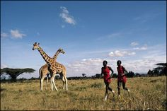 Neil Leifer Photography - Olympics : Kenyan Runners