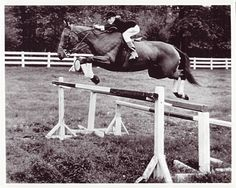 Carolyn Jumping, The Cowgirl and The Colts, by Paul Travers.