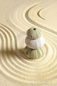 Sea Urchin Zen Garden @Kathi Bishop Everett Rogers