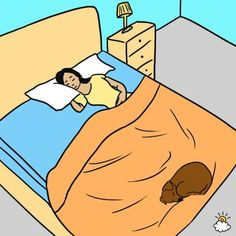 As a person with insomnia I always sleep better when I go home and sleep with my dog