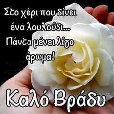 Good Night, Good Morning, Night Photos, Quotes, Nighty Night, Buen Dia, Quotations, Bonjour, Good Night Wishes