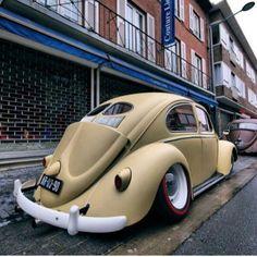 #regram de @fuscaclubcuritiba nos deja este #bug en acabado mate #escarabajo #fusca #vocho #bettle #pichirilo #vosvos #käfer #vwporn #volksworld #volkswagen #aircooledvw #aircooled