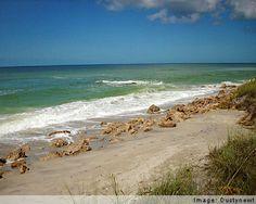 Venice Beach, FL- My favorite weekend destination.