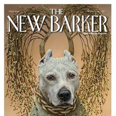 Meet #Cypress and read her story in the current issue of THE NEW BARKER. Oil on canvass, 18x24. Artwork by Dana Hawk Paintings and Dog Portraits. Pick up advance copies at Fluffy Puppies, Bark Life Market and More, Dog-Mania & Cats, Pawsitively Posh Pooch, Paws Inn Paradise, Pasadena Pet Motel, Pet Food Warehouse, Pet Supplies Plus Tampa Bay Area, Brandon Honda, Fuzzie Buddies Pet Resort. And, more to come.