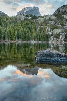Nymph Lake rests in Rocky Mountain National Park, and grows beautiful yellow water lilies in late summer.