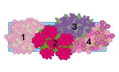 Gartenglück auf kleinstem Raum ermöglicht diese Kombination aus aufrecht wachsenden und hängenden Arten