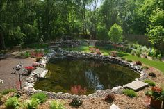 pond pool | Swimming Pond Design Ideas, Pictures, Remodel, and Decor