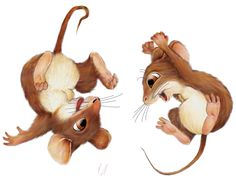 House illustration cute mice Ideas for 2019 Funny Mouse, Cute Mouse, Animal Drawings, Cute Drawings, Mouse Sketch, Mouse Paint, Mouse Illustration, Mouse Pictures, Mouse Crafts