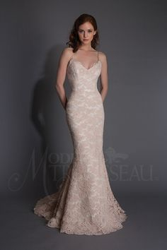 Modern Trousseau wedding gowns and dresses for the Nashville bride. Find your custom wedding dress in our private appointments. Experience the Modern Trousseau difference. White Wedding Gowns, 2016 Wedding Dresses, Wedding Attire, Bridal Dresses, Modern Trousseau, Dress Vestidos, Spring Dresses, Beautiful Gowns, Bridal Collection