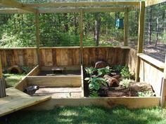 Ideas for outdoor enclosures | Tortoise Forum