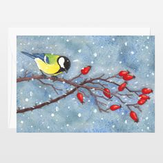 Winter cards collection. New on @boomboomprints #greetingscard #thekittensfamily #illustrations #books #art #artprint #cute #snow #birds #berries  #bluetit  Fun Indie Art from BoomBoomPrints.com! https://www.boomboomprints.com/Product/barbarajelenkovich/Birds_and_berries_Parus_maior/Flat_Cards/25_35x5_Cards/