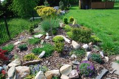 Fantastisch Steingarten Anlegen Mulch Bodendecker Immergruene Gehoelze