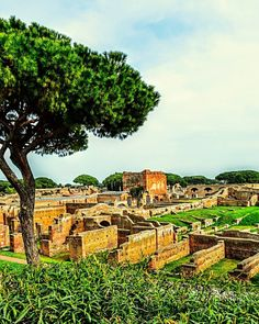 """""""Once Upon A Time""""  #photobydperry #ostiaantica #repostromanticitaly #rome #roma #italy #italia #noidiroma #myrome #europe #europa ##wp #fb #discoverglobe #topeuropephoto #architecture #instagood #instatravel #amazing #incredible_italy #awesome_earthpix #Italia_super_pics #ig_italy #ig_rome #loves_united_hdr #going_into_details #loves_united_roma #scavi #excavation #spgitaly"""