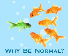 Why should you be normal? Just be YOU. Campaign Slogans, Campaign Posters, Safety Quotes, Autism Sensory, Funny Posters, Funny Slogans, Say That Again, Just Be You, Anti Bullying