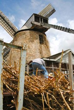 Stop by for some sweetness... Morgan Lewis Windmill, Barbados. http://on.fb.me/Liu9Xz