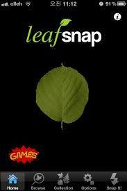 leafsnap - Biología y Competencias Básicas.