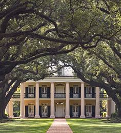 LOVE the plantation style front of the house. And I love the long drive with the trees forming a canopy over it.