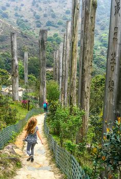 Walk the Wisdom Path near Hong Kong's Big Buddha.