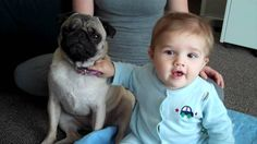 puggy and baby