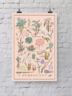 I hand illustrated this print and then scaned it into my computer to add color, texture and distress. The Herbology print is the perfect gift