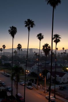 Attractive Los Angeles http://www.travelandtransitions.com/destinations/destination-advice/north-america/