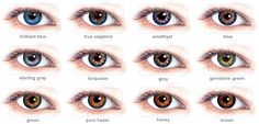 freshlook-colorblends-lens-FreshLook ColorBlends cosmetic contact lens.png