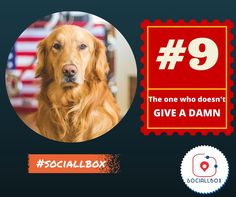 The one who doesn't give a damn !  10 types of friends you find in every group. www.sociallbox.com