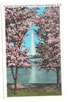 1937 Vintage Washington D.C. Cherry Blossums and Washington Monument Postcard by PicturesFromThePast, $4.95