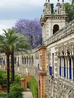 Royal Alcazars of Sevilla, Spain Places Around The World, Oh The Places You'll Go, Places To Travel, Travel Destinations, Places To Visit, Around The Worlds, Malaga, Wonderful Places, Beautiful Places