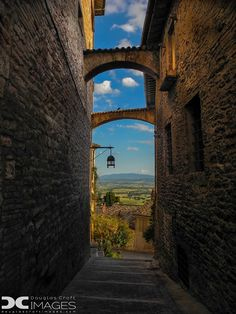 ~ The Umbrian countryside ~  Travel to Assisi on a Rick Steves Village Italy in 14 Days Tour:  http://www.ricksteves.com/tours/italy/village-italy. In Assisi, we'll visit a local farmer and his specially-trained dog, hunting for one of the area's specialties: the truffle. We'll stay on the farm for a while, joining the family for a hearty, home-cooked dinner, including the truffles. (Photo: Doug Croft)