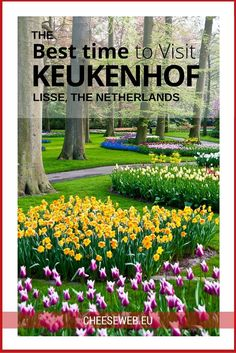 The Best time to visit Keukenhof Gardens, in Lisse, the Netherlands
