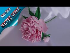Пион из фоамирана с выкройками. Мастер класс от Nata Liana. - YouTube Crepe Paper Crafts, Biscuit, Foam Roses, Polymer Clay Flowers, Flower Crafts, Antique Dolls, Clay Art, Flower Patterns, Paper Flowers