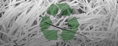 Shredded Paper, Plant Leaves, Recycling, Book, Plants, Livres, Repurpose, Plant, Books