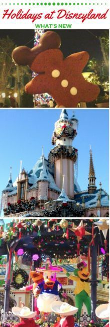What's new for Christmas and the holidays at the Disneyland Resort? New experiences and special attractions for a magical time with gingerbread, overlays, Walt and Mickey. Festival of Holidays   Disney California Adventure   Anaheim   Holiday   Christmas travel