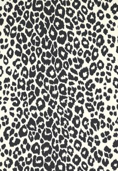 16 best animal print wallpaper images on pinterest animal print