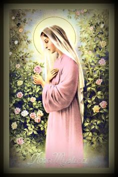 THE REQUEST OF OUR BLESSED MOTHER FOR THE HOUR OF GRACE   Day and time of the Hour of Grace - December 8th  Feast of the Immaculate Concept...