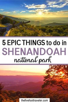 5 Things To Do In Shenandoah National Park – The Five Foot Traveler East Coast Road Trip, Road Trip Usa, Places To Travel, Places To See, Travel Destinations, Virginia Is For Lovers, Day Trips In Virginia, Virginia Camping, Shenandoah National Park