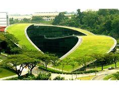 30 Increíbles Diseños de Techos Verdes