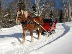 Go on a sleigh ride