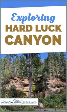 Exploring Hard Luck Canyon near Whitecourt, Alberta! Everything you need to know about visiting this stunning sandstone canyon with the family.