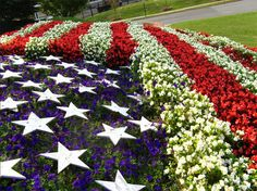 The Star-Spangled Banner If I can ever turn my black thumb green, I'll do this.
