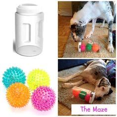 "The Maze ~ Does your Dane perform crazy indoor ""zoomies"" when you're unable to get out for your daily walk? Check out 3 DIY dog puzzle feeders sure to help expend some of that pent up energy…and save a lamp or two! http://thedanedame.com/diy-puzzle-feeder/"