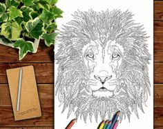 Coloring Pages For Zebra : Pin by barbara on coloring horse zebra adult coloring