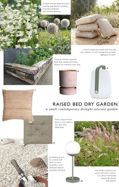 My plans to transform a tired raised bed made from recycled railway sleepers into a small contemporary dry garden - drought tolerant plants - gravel garden ideas - hayloft plants Dry Garden, Gravel Garden, Beth Chatto, Online Nursery, Dutch Gardens, Drought Tolerant Garden, Railway Sleepers, Hardy Perennials, Unusual Plants