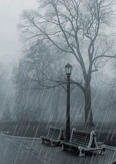 linda lluvia Más