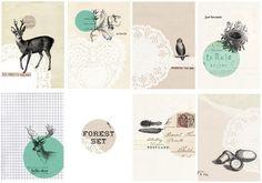 Kelli Murray's Blog » Blog Archive » PRINTABLE GIFT TAGS!