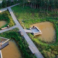 Qunli National Urban Wetland by Turenscape
