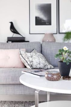Gray Living Room with Pink Pillows and White Lacquer