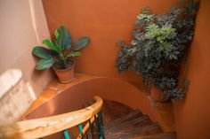 Hotel Casa de la Marquesa English Review Queretaro Mexico Luxury Hotels of the World Beach Hotels, Hotels And Resorts, Luxury Hotels, Beautiful Hotels, Beautiful Gardens, Honeymoon Vacations, Visit Mexico, The Beautiful Country, Cool Landscapes